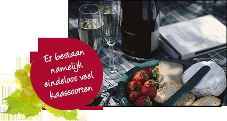 Lichte Rode Wijn : Workshop wijn leren proeven les degustatie