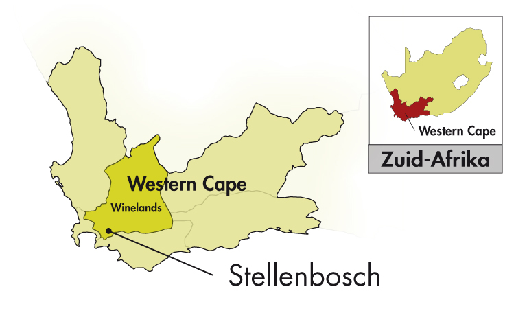 DeMorgenzon Stellenbosch Walvisch Kaapse rood